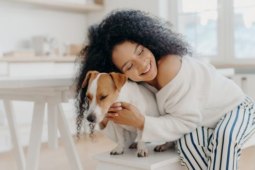 Lovely young curly African American woman embraces beloved pedigree dog with love, has gentle smile, wears stylish clothing, poses against home background in modern apartment, expresses care