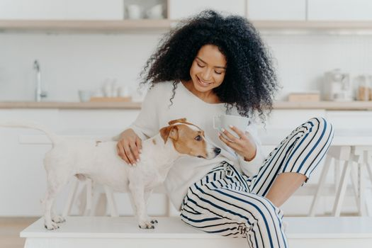 Lovely African American woman has coffee break, petting pedigree dog, sits on comfortable white bench against kitchen background, smiles with happiness. People, care, love and animals concept