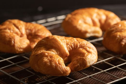 croissant on the grille in the oven