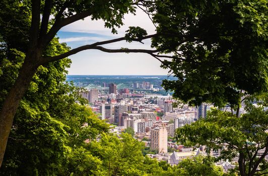 MONTREAL, CANADA - JUNE 16, 2018: Part of downtown and the Jacques Cartier Bridge can be seen through the trees looking north-east from Mount Royal.