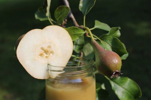pear sauce in front of a pear tree