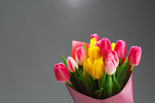 tulip flowers bouquet, gray background