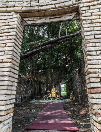 Nakhon Nayok, Thailand - Mar 21, 2020 : Many big tree roots covering The ancient church without roof inside there is a Buddha statue at The ancient of a 200 year old church. Wat Pah Krathum. No focus, specifically.