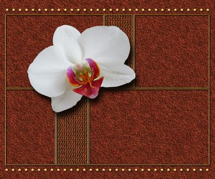 3D render textured background template with nice flower embellishment and metallic creative element