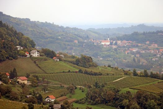 Top view of the vineyard valleys and the countryside in the mountains