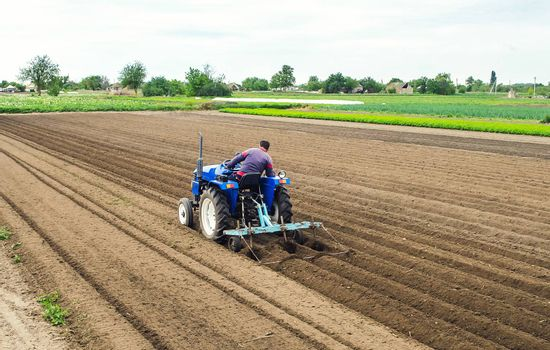 A farmer on a tractor plows the field for further sowing of the crop. Soil preparation. Working with a plow. Growing vegetables food plants. Farming agribusiness. Agricultural industry.