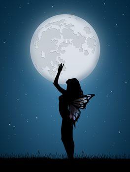 illustration of fairy in the moonlight