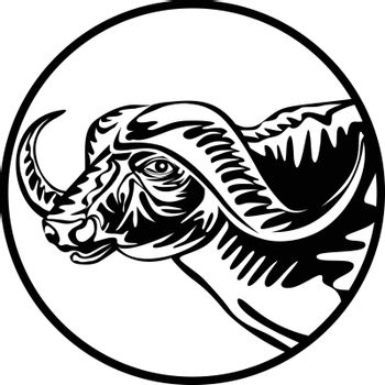 Retro style illustration of an African buffalo or Cape buffalo, a large sub-Saharan African bovine viewed from side set in circle on isolated background done in black and white.