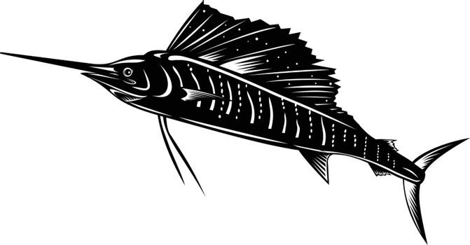Retro woodcut style illustration of an Atlantic sailfish or Indo-Pacific sailfish, a fish of genus istiophorus of billfish, jumping up viewed from side isolated background done in black and white.