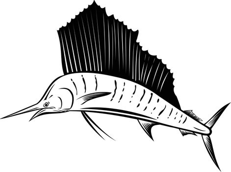 Retro woodcut style illustration of an Indo-Pacific sailfish, a fish of genus istiophorus of billfish native to the Indian and Pacific Oceans, jumping up isolated background done in black and white.
