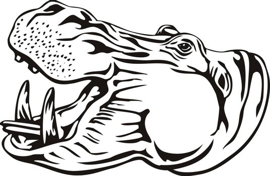 Retro woodcut style illustration of head of a hippopotamus, hippo, common hippopotamus or river hippopotamus, a large herbivorous, semiaquatic mammal ungulate isolated background in black and white.