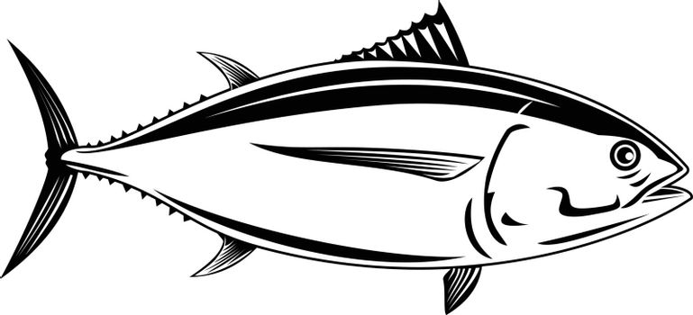 Retro woodcut style illustration of a Pacific albacore Thunnus alalunga or longfin tuna, a species of tuna of the order Perciformes a pelagic predator viewed from side done in black and white.