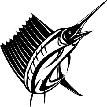 Retro woodcut style illustration of an Atlantic sailfish or Indo-Pacific sailfish, a fish of genus istiophorus of billfish living in cold areas, jumping up isolated background done in black and white.