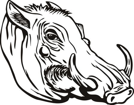 Retro woodcut style illustration of head of a common warthog or Phacochoerus africanus, a wild member of the pig family Suidae found in sub-Saharan Africa on isolated background in black and white.