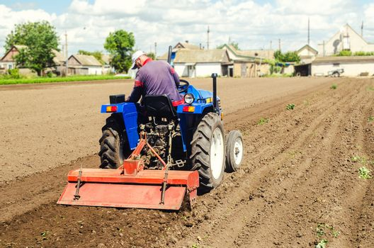 Farmer drives a tractor with a milling machine. Loosens, grind and mix soil on plantation field. Loosening surface, cultivating the land. Farming, agriculture. Field preparation for new crop planting.