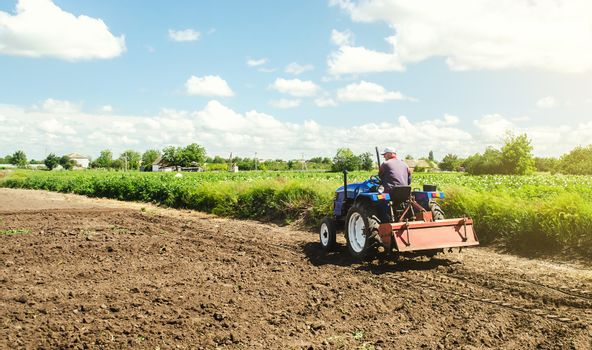 Farmer drives a tractor with a milling machine. Loosening surface, cultivating the land. Farming, agriculture. Loosens, grind and mix soil on plantation field. Field preparation for new crop planting.