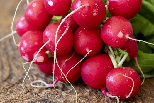 fresh red radish on dark wood