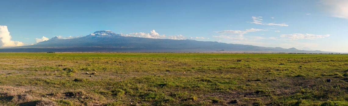 High resolution panorama of Amboseli national park with mount Kilimanjaro and small animals in the background.