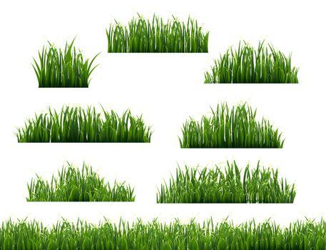 Green Grass Frame White Background, Vector Illustration