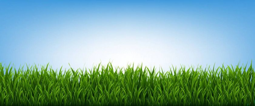 Green Grass Frame And Blue Sky Background, Vector Illustration