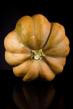 Ripe whole orange pumpkin on black background