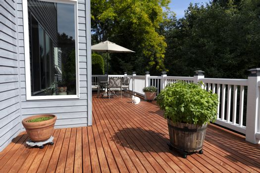 Large wooden barrel of fresh organic basil on home outdoor deck with family dog