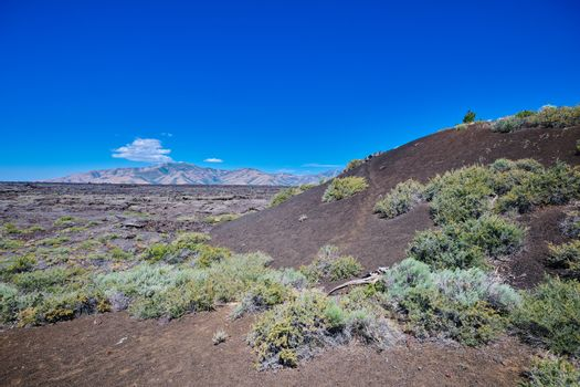 Cinder Cone with the Pioneer Mountains in the background at Crat