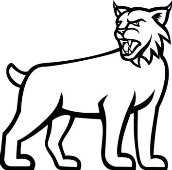 Black and white illustration of a lynx, Canada lynx, Eurasian lynx or Bobcat,a medium-sized wild cat   viewed from side on isolated background in retro style.