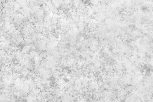 Black and white background. Snow texture background.