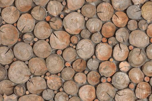 Decorative log wall. Round wood stump background