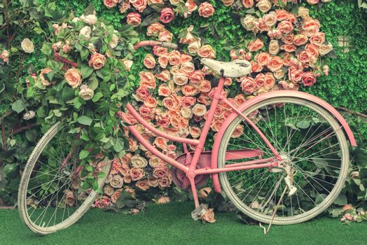 Flowers and bicycle. Bicycle in a garden