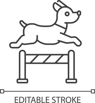 Pet training linear icon