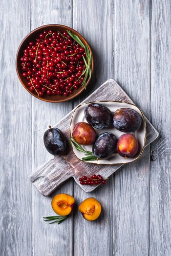 Fresh sweet plum fruits whole and sliced with rec currant