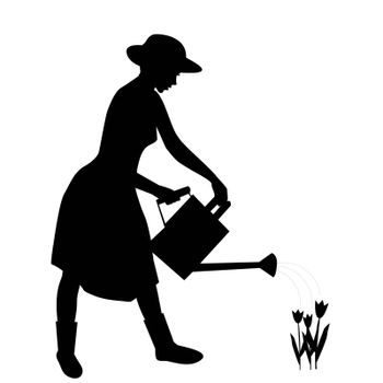 Silhouette of woman gardener watering flowers with water can