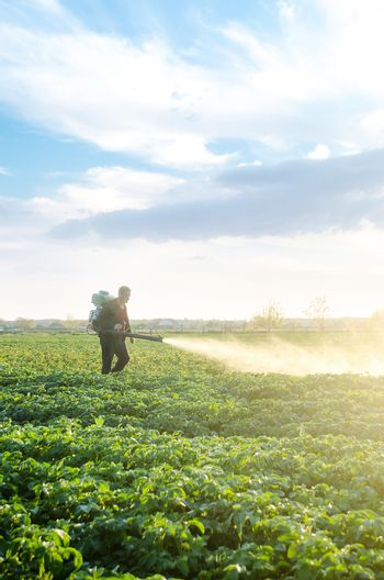 A farmer with a mist sprayer blower processes the potato plantation from pests and fungus infection. Fumigator fogger. Use chemicals in agriculture. Agriculture and agribusiness. Harvest processing.