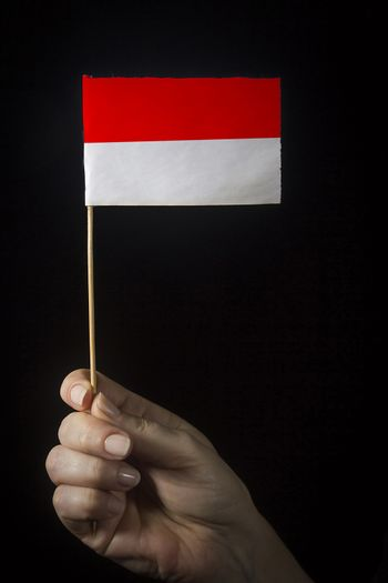 Hand with small flag of state of Indonesia