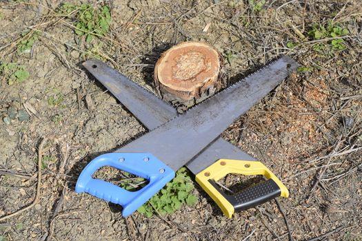 Two saws hacksaws lie across. Garden tool saw.