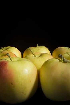 Organic fresh ripe apples on black background