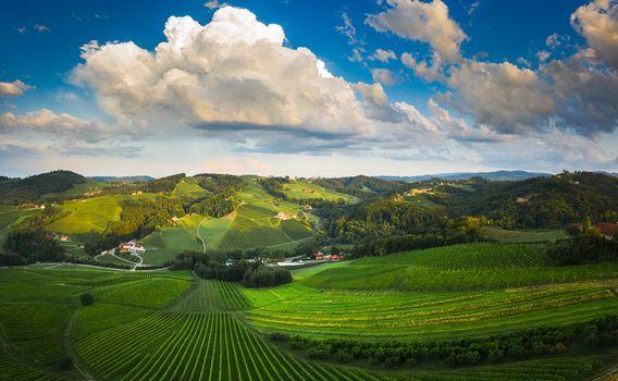 South styria vineyards aerial panorama landscape, near Gamlitz, Austria, Eckberg, Europe. Grape hills view from wine road in spring. Tourist destination, travel spot.