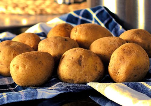 Potatoes on the blue kitchen towel