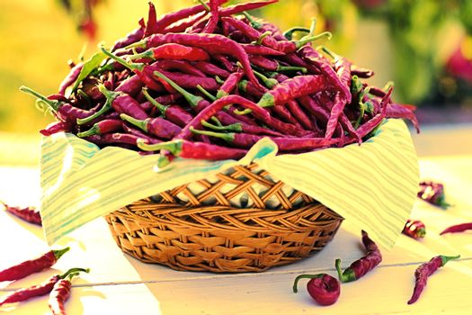 Chili peppers in wicker basket in the garden