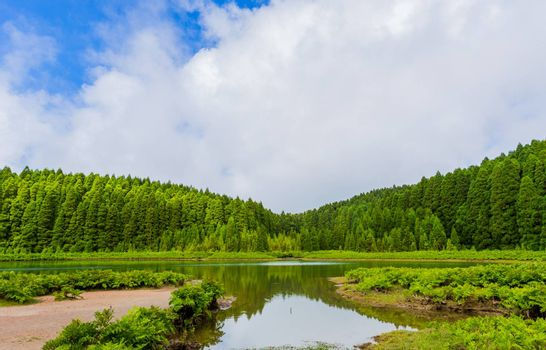 Lagoa do Canario. View of the green lagoon of Canary lake in Sao Miguel island, Azores, Portugal on a beautiful sunny say