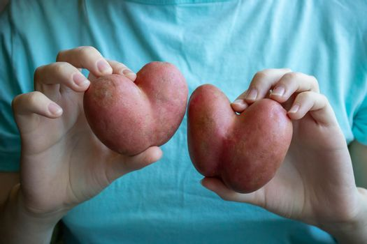 A woman in a blue t-shirt holds a heart-shaped potato