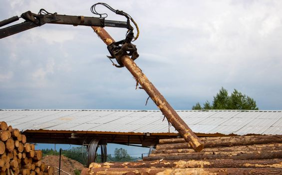 Logging, sawmill. Manipulator for loading wood. The loader of boards and logs works against the background of a stormy sky