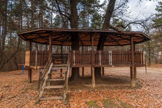 Wooden fairytale treehouse.