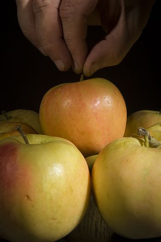Male hand picks a ripe fresh apple