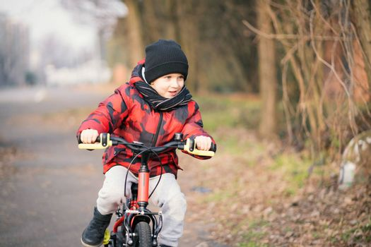 Cheerful little boy while riding bicycle in the park.