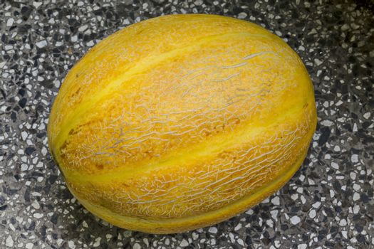 Close-up photo of a fresh ripe whole melon, Sofia, Bulgaria
