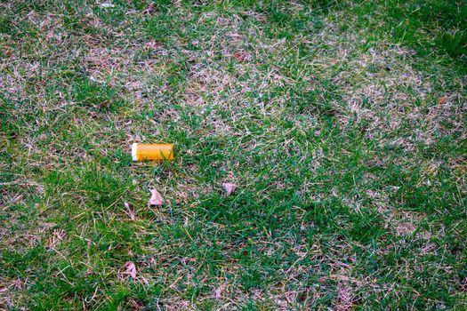 An Orange Prescription Pill Bottle in a Field of Green Grass