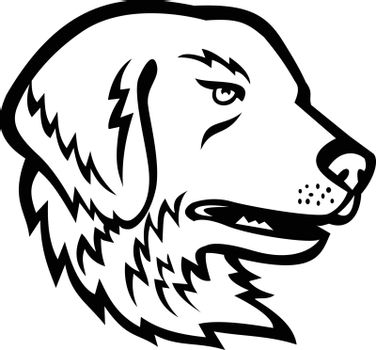 Mascot illustration of head of a Great Pyrenees or Pyrenean Mountain Dog, a large breed of dog used as a livestock guardian dog viewed from side on isolated background in retro black and white style.